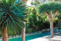 Tarleton pool
