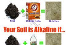 Soil Improvement