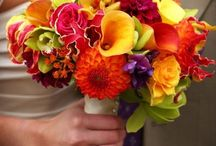 colorful flower bouquets / by Lissa Leak