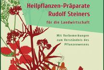 Selbstversorgung Garten Gesundheit Kräuter Selbstverantwortung / poste hier alles was zur #Selbstversorgung nützlich sein kann #Tipps #Garten #Gesundheit #Kräuter #Essen #outdoor #Internet #Marketing #Image #Aufbau #Präsenz #SocialMedia #Imageaufbau  http://saraha-social-web.de