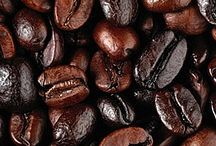 Coffee from around the world / Experiencing the coffee culture