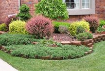 озеленение небольших двориков
