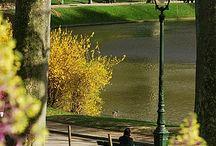 Paris et Bonlieu