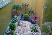 Jardin de inverno