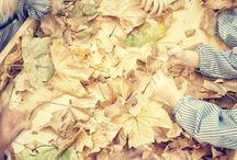 Otoño: #EPmomentosdefelicidad  / Las mejores imágenes que han mandado los lectores a través de Instagram con la etiqueta #EPmomentosdefelicidad / by El Periódico de Catalunya