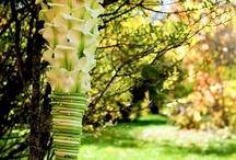 ombrelli fioriti