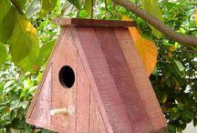 Bird House - Kuş Evleri / Uzun vadeli kullanılabilecek kuş evleri  sizin için