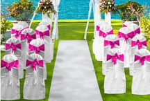 party rental city / Hello and welcome to Miami Party Rental City. We provide everything from tables and chairs to tents, rides, and water slides.