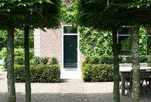 Middenweg | tuin