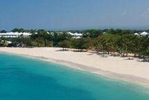 Den Dominikanske republikk