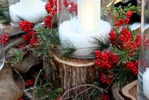 Christmas Decor & Projects / Ideas for the holidays around the house