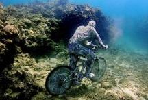Activities Cancun