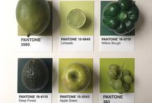 Pantone's Colour of the Year 2017 | Greenery