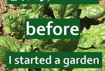 Things to know before you start a garden