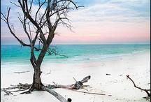 Havelock / Glimpses of Havelock, Andaman & Nicobar Islands, India
