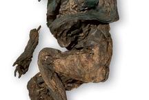 Bog body archaelogy