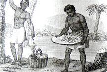 histoire du chocolat