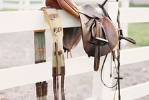 horse tack and more