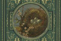 Copertine Libri Vintage
