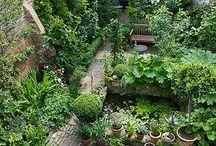 Byhaver / Små frodige vilde haver