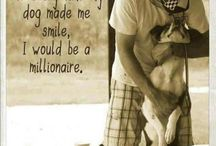 Dogs and all other animals <3