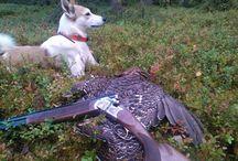 Hunting Board