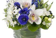 Hanukkah Floral Design