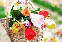 Rengarenk çiçekler  / Sevdiklerinizle geçirdiğiniz haftasonunda onları çiçeklerle mutlu etmeyi unutmayın! Rengarenk çiçek tasarımları çok yakında www.escicek.com'da! #escicekcom #escicek #haftasonu #mutluluk #rengarenk #cumartesi #günaydın #çokyakında #tasarım