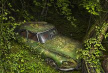 Forgotten / Some abandoned cars and other machines etc. often defeated by nature.
