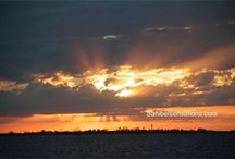 Sanibel Sensations/ Scents of the Sea Coastal Photography  / Beach Inspired Unisex Island Fragrances, Home Diffusers, Massage Oils.. Captivating Seascapes & Sunsets Photography. Wear our Cologne Oils and gently relax to the imagery! You will feel like you have been on vacation~  / by Sanibel Sensations