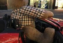 DAKSテディベアフォトコンテスト / DAKS TEDDY BEAR 20周年記念プレゼントキャンペーン フォトコンテスト写真を紹介します。 ※キャンペーンは2016年12月11日(日)をもちまして、終了いたしました。