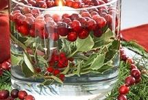 Christmas Decorations / by Pamela Ziegler