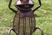 i animals frogs