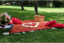 Romantic picnics