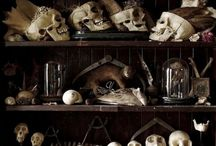Inspired By: Cabinet Of Curiosities