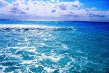 World // Oceans