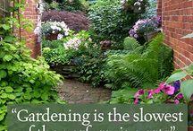 Notable, quotable, garden wisdom