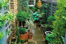 Aprócska kertek