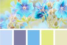 Colours ;)