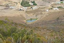West Coast Farms / Farms for sale on the West Coast of the Western Cape of South Africa