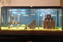 Under the sea / Fishtanks I just love! So relaxing and mesmorizing! Come take a swim and check it out!