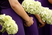 Mindy's Wedding!