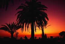 Southern California / Bringing you the best of SoCal ... from beaches to palm trees to tropical drinks and surfing. This is where we'll inspire you to dream of California travel. / by Expedia