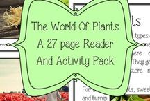 Botany: Plant activities for kids