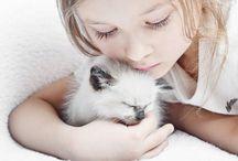 Citáty o kočkách