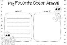 Term 2 : Under the Sea Theme