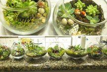 Gardening & Natural Design