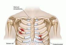 PT Upper Back/Chest