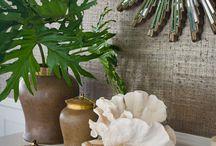 Hawaii Home / Home decor ideas  / by Destiny Ruiz