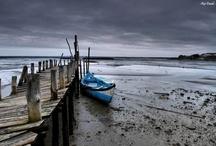 Sado Estuary – Gallery of Photos